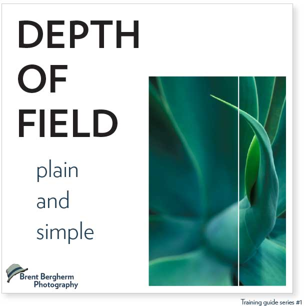 Depth-Of-Field Guide